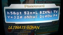 Red potaras passwords for the video game Dragonball Z Budokai Tenkaichi 3.